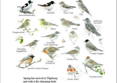 Småfåglarnes Hwenner